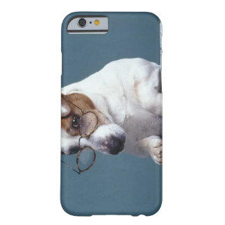 Dog with reading glasses studying map iPhone 6 case