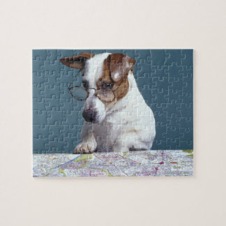 Dog with reading glasses studying map jigsaw puzzle