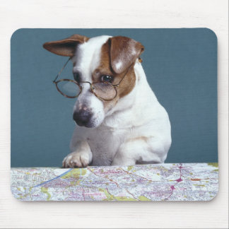 Dog with reading glasses studying map mouse pad