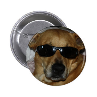 Dog with sunglasses button