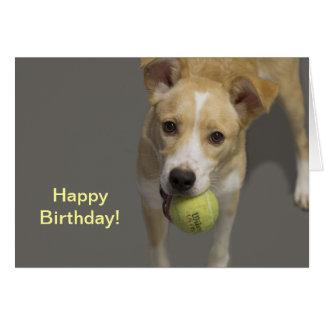 Dog With Tennis Ball Birthday Card