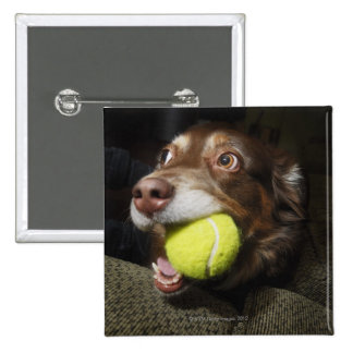 Dog with Tennis Ball 2 Inch Square Button