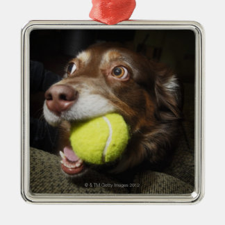 Dog with Tennis Ball Metal Ornament