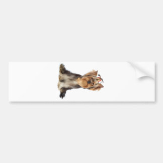 Dog with tilted head bumper sticker