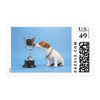 Dog with trophy postage stamp