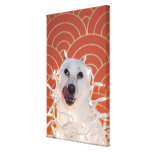 Dog Wrapped in Christmas Lights 2 Canvas Print