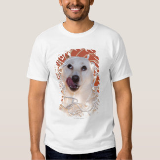 Dog Wrapped in Christmas Lights 2 Tee Shirt