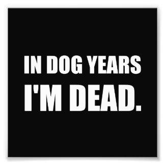Dog Years Dead Photo Print