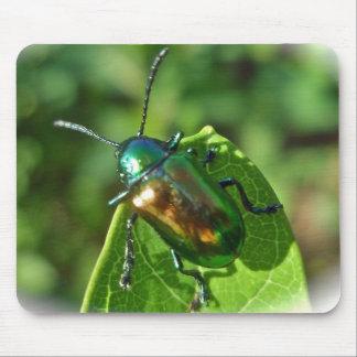 Dogbane Beetle Mousepad