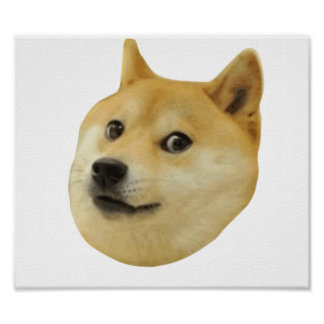 Doge Very Wow Much Dog Such Shiba Shibe Inu Poster