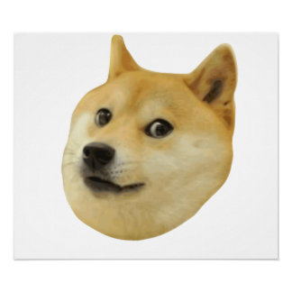 Doge Very Wow Much Dog Such Shiba Shibe Inu Poster