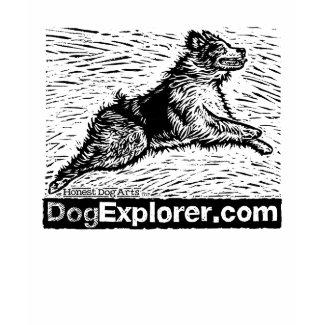 Ventura Pooch Parade – Meet The Artist Allison White From Honest Dog Arts!