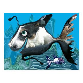 Dogfish Reef Postcard
