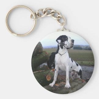 Dogge alemán, Great Dane, Perros, Dogue Allemand Llavero Redondo Tipo Pin