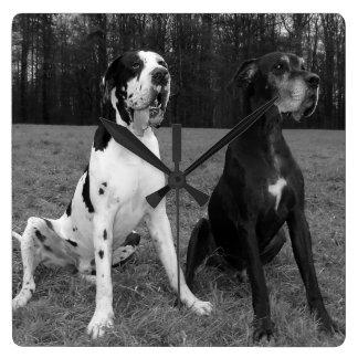 Dogge alemán, Great Dane, Perros, Dogue Allemand Reloj Cuadrado