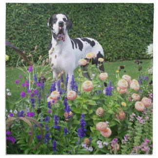Dogge alemán, Great Dane, Perros, Dogue Allemand Servilleta Imprimida