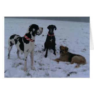 Dogge alemán, Great Dane, Perros, las Navidades Tarjeta De Felicitación