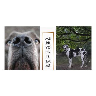 Doggen photo maps card