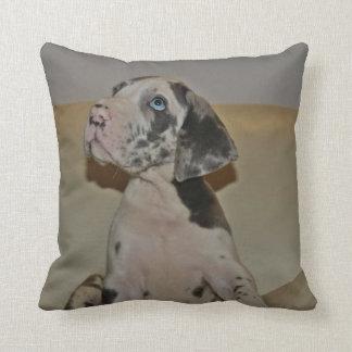 Doggenwelpe cushion