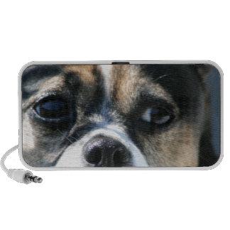 Doggie Darling Mp3 Speakers