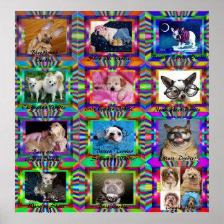 Doggie Doodles Poster Print