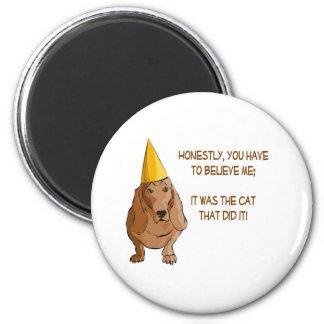 Doggie Duncecap Fridge Magnets