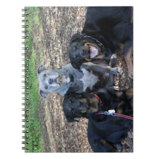 Doggie Family Picture Notebook