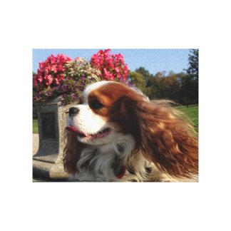 Doggie Glamour Shot! Canvas Print