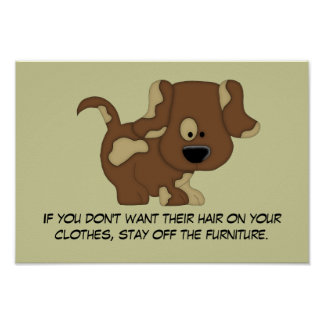 Doggie Hair Rule #1 Poster