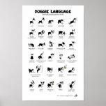boston terrier, dog, body language, communication,