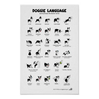 DOGGIE LANGUAGE Large Poster