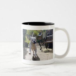 Doggie Photo Gifts: Run Mugs