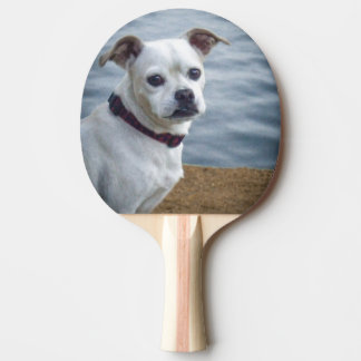 Doggie Ping Pong Paddle