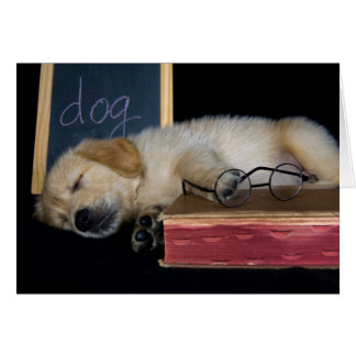 Doggie School Stationery Note Card