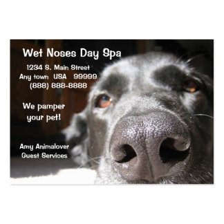 Doggie Spa Business And Appointment Card Business Cards