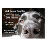 Doggie Spa Business And Appointment Card Large Business Cards (Pack Of 100)