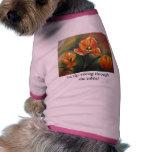 Doggie Sweater Dog T Shirt