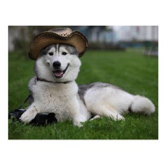 Doggie Tourist Postcard