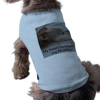 Doggie wear doggie t shirt