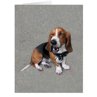 Doggone lindo tarjeta de felicitación grande