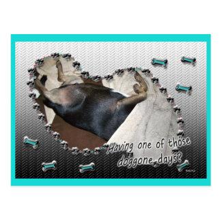 Doggone los días consiguen bien tarjeta postal