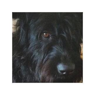 Doggy Canvas