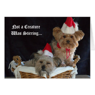 Doggy Christmas Stationery Note Card