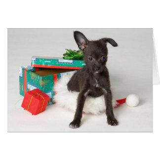 Doggy Christmas present Card