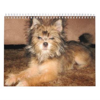 doggy days calendar