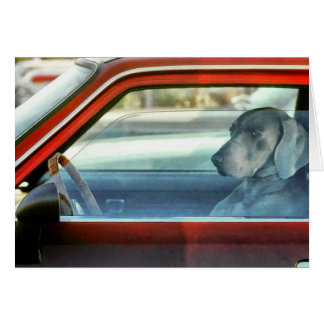 Doggy driver greeting card