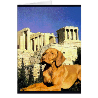 """Doggy Goes to the Acropolis"" Card"