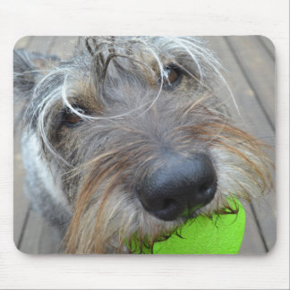 Doggy Nose Mouse Pad