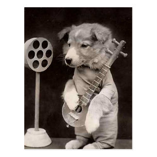 Doggy Radio Star Postcard