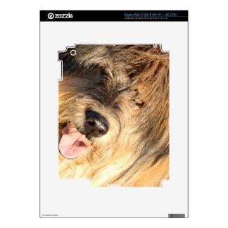 Doggy iPad 3 Decal